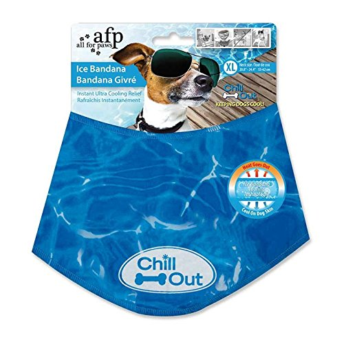 All For Paws Chill Out Ice Bandana, XLarge
