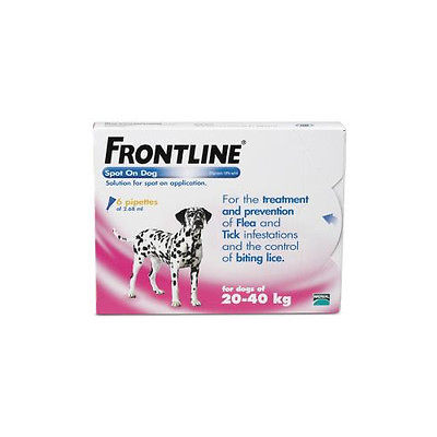 Spot On Large Dog 20kg to 40kg  Frontline 6 Pipettes