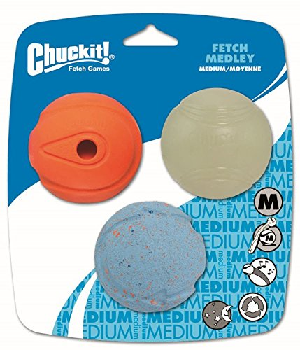 Chuckit Fetch Medley Assorted Balls (3Pk) Medium
